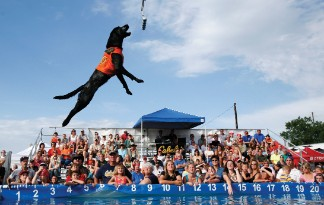 dockdogs2.jpg.opt324x205o0,0s324x205
