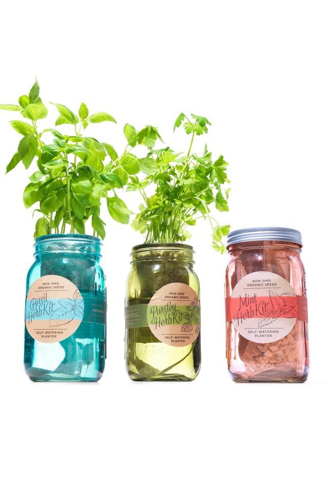 garden jar